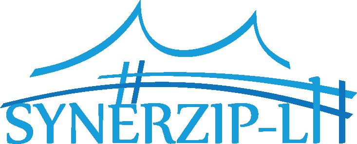 Logo Synerzip